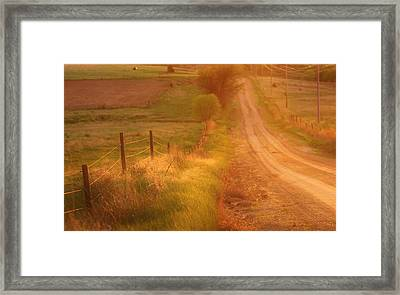 Counrty Sunshine Framed Print by Shirley Heier