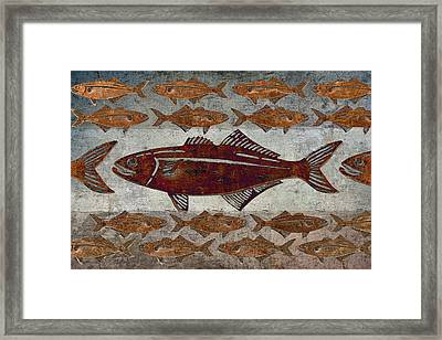 Counting Fish Framed Print by Carol Leigh
