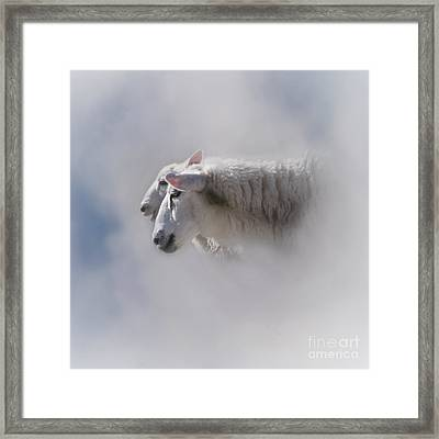 Counting Framed Print by Heiko Koehrer-Wagner