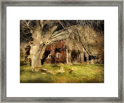Country Afternoon Framed Print