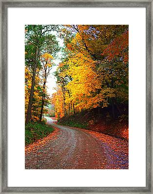 Country Autumn Gravel Road Framed Print by Julie Dant
