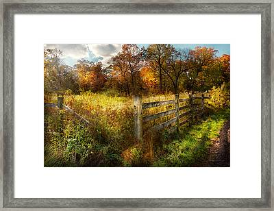 Country - Autumn Years  Framed Print by Mike Savad