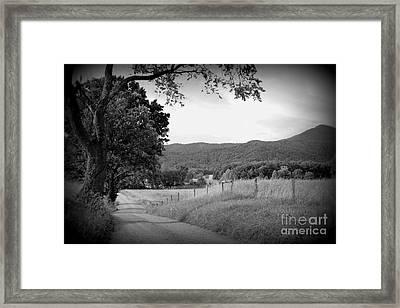 Country Bliss Framed Print