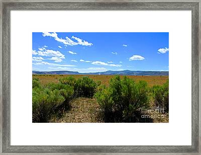 Country Boy  Framed Print by Tim Rice