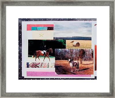 Country Collage 6 Framed Print