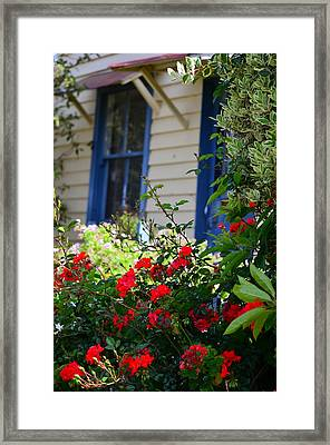 Country Comfort Framed Print