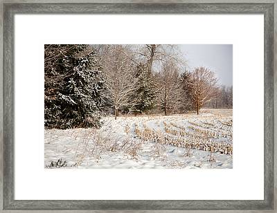 Country Contentment Framed Print