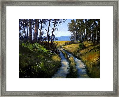Country Drive Framed Print by Douglas  Johnpeer