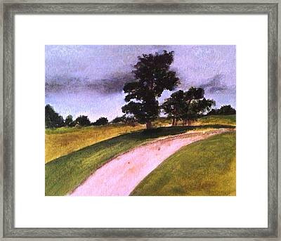 Country Driveway Framed Print by Andrea Friedell