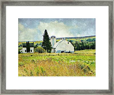 Country Farm Framed Print by Dianne  Lacourciere