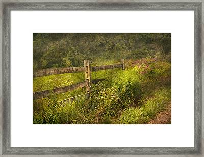 Country - Fence - County Border  Framed Print by Mike Savad