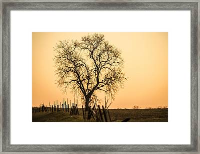 Country Fence Sunset Framed Print