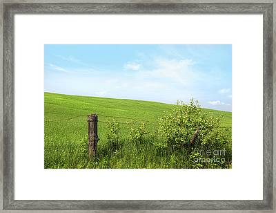 Country Fence With Flowers With Blue Sky Framed Print by Sandra Cunningham