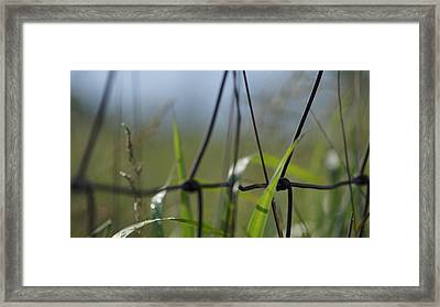 Country Fence Works Framed Print by Rosemarie E Seppala
