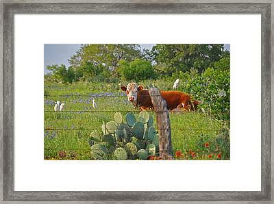 Country Friends Framed Print