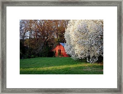 Country Gem Framed Print by Skip Willits