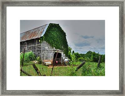 Country Girls Dream Framed Print
