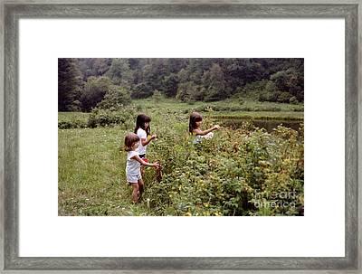 Country Girls Picking Wild Berries Framed Print