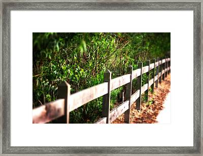 Country Green Framed Print