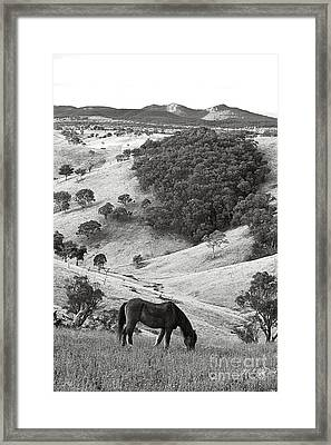 Country Hills Framed Print by David Benson