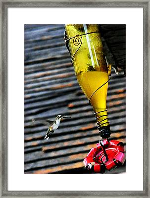 Country Hummer2 Framed Print by Leon Hollins III