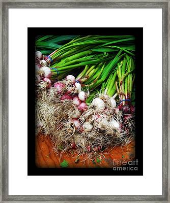 Country Kitchen - Onions Framed Print by Miriam Danar