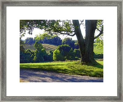 Country Landscape Framed Print