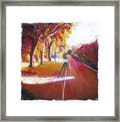 Country Lane 2 Framed Print by Nyree Goad