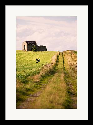 Country Lanes Photographs Framed Prints
