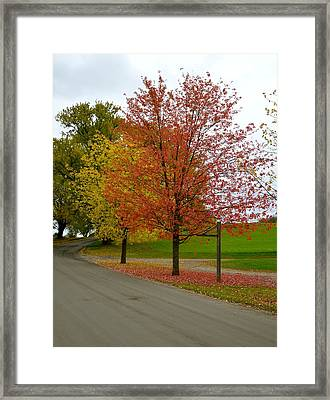 Country Lane Framed Print by Corinne Rhode