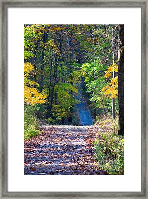 Country Lane Framed Print by Deb Kline