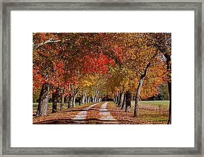 Framed Print featuring the photograph Country Lane In Autumn by Jerry Gammon
