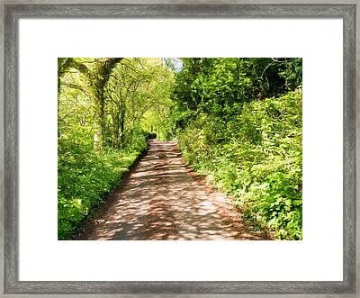 Country Lane Painting Framed Print by Roy Pedersen