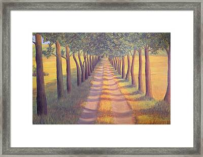 Country Lane Framed Print by Sophia Schmierer