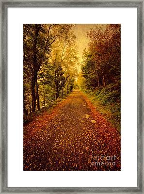 Country Lane V2 Framed Print by Adrian Evans