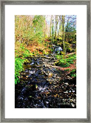 Framed Print featuring the photograph Country Life by Doc Braham