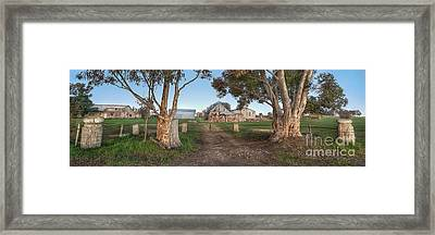 Country Life Framed Print by Shannon Rogers