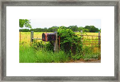 Country Mailbox Framed Print by Lne Kirkes