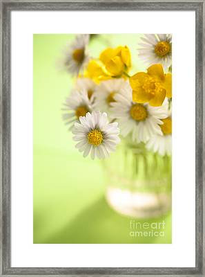 Country Posy Framed Print by Jan Bickerton