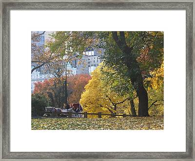 Framed Print featuring the photograph Country Ride In The City by Barbara McDevitt
