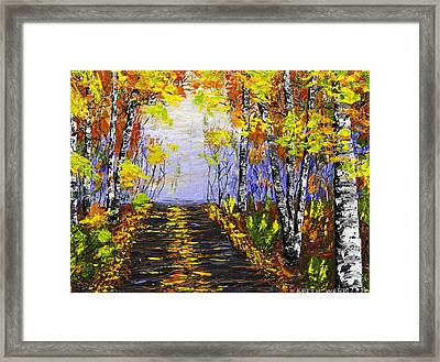 Country Road And Birch Trees In Fall Framed Print by Keith Webber Jr