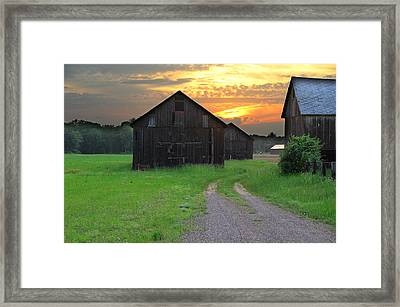 Country Road Framed Print by Andrea Galiffi