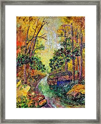 Country Road Framed Print by Anne Hamilton