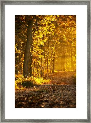Country Road Central Indiana Framed Print