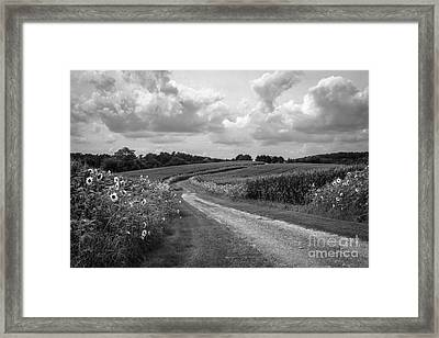Country Road Framed Print by Chris Scroggins