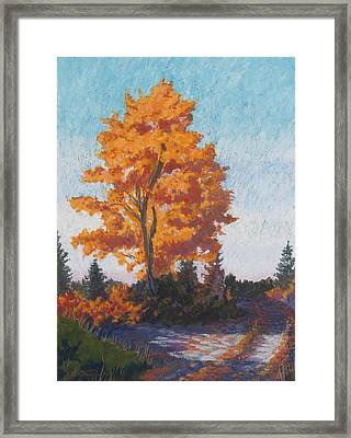 Country Road Cold Fall Morning Framed Print