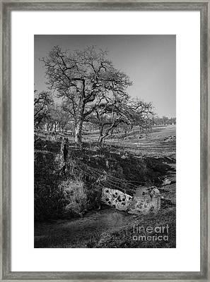 Country Road Framed Print by Dan Julien