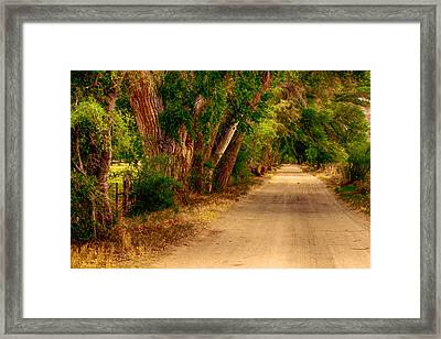 Country Road Framed Print by Fred Larson