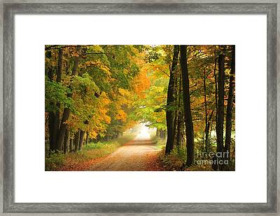 Country Road In Autumn Framed Print by Terri Gostola