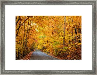 Country Road In Fall Framed Print